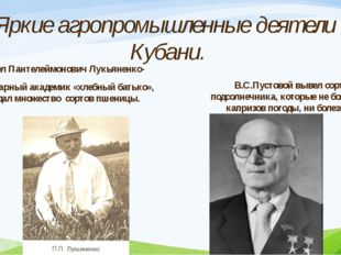 Павел Пантелеймонович Лукьяненко- легендарный академик «хлебный батько», соз