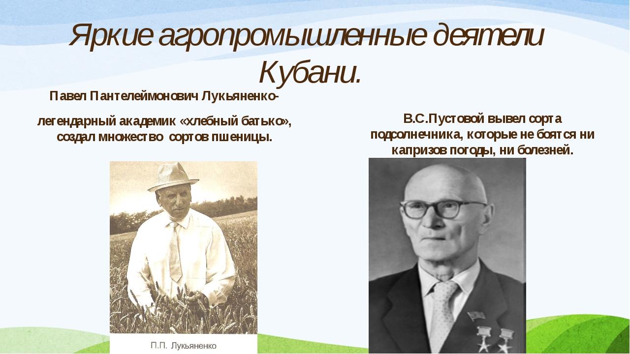 Павел Пантелеймонович Лукьяненко- легендарный академик «хлебный батько», соз...