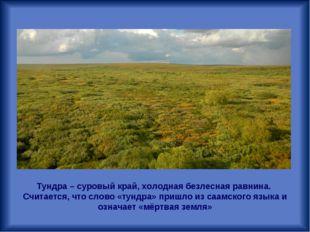 Тундра – суровый край, холодная безлесная равнина. Считается, что слово «тунд