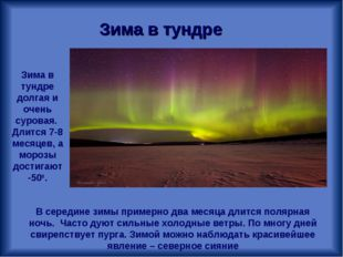 Зима в тундре Зима в тундре долгая и очень суровая. Длится 7-8 месяцев, а мор