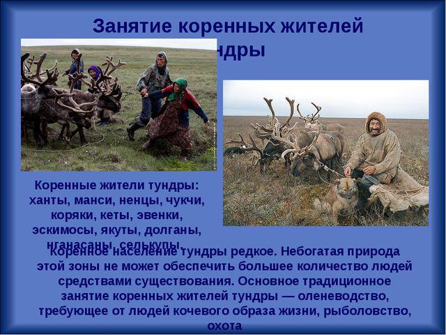 Занятие коренных жителей тундры Коренное население тундры редкое. Небогатая п...