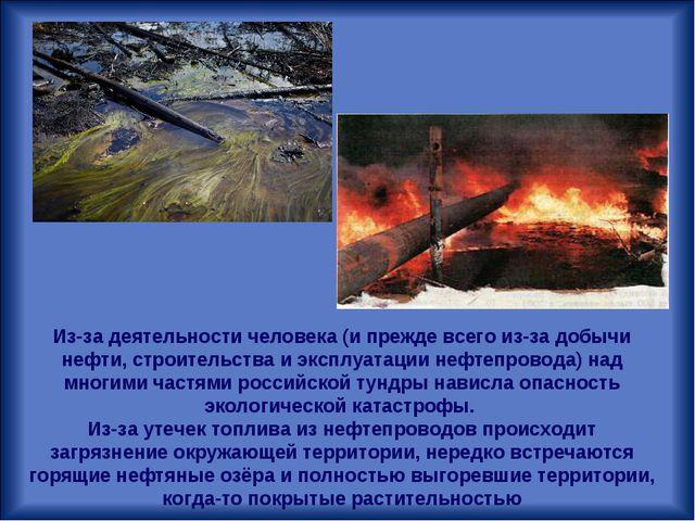 Из-за деятельности человека (и прежде всего из-за добычи нефти, строительства...