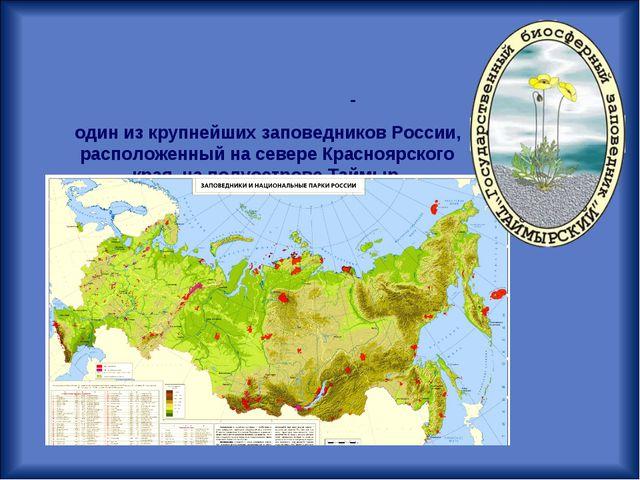 Госуда́рственный приро́дный биосфе́рный запове́дник «Таймы́рский»- один из к...