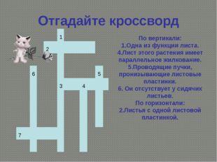 Отгадайте кроссворд По вертикали: 1.Одна из функции листа. 4.Лист этого расте