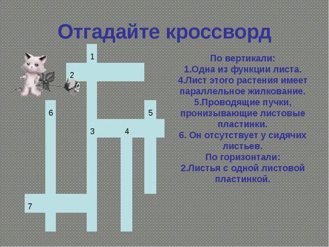 Отгадайте кроссворд По вертикали: 1.Одна из функции листа. 4.Лист этого расте...