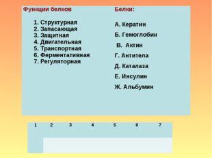Функции белков  1. Структурная 2. Запасающая 3. Защитная 4. Двигательная 5.