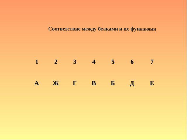 Соответствие между белками и их функциями 1234567 АЖГВБДЕ