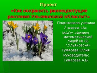 Проект «Как сохранить раннецветущие растения Ульяновской области?» Подготовил