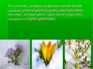 Все растения , которые расцветают ранней весной называют раннецветущими расте