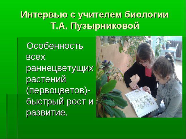 Интервью с учителем биологии Т.А. Пузырниковой Особенность всех раннецветущих...