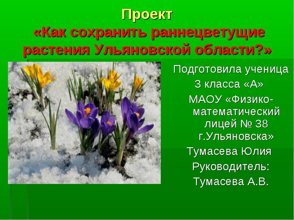 Проект «Как сохранить раннецветущие растения Ульяновской области?» Подготовил...