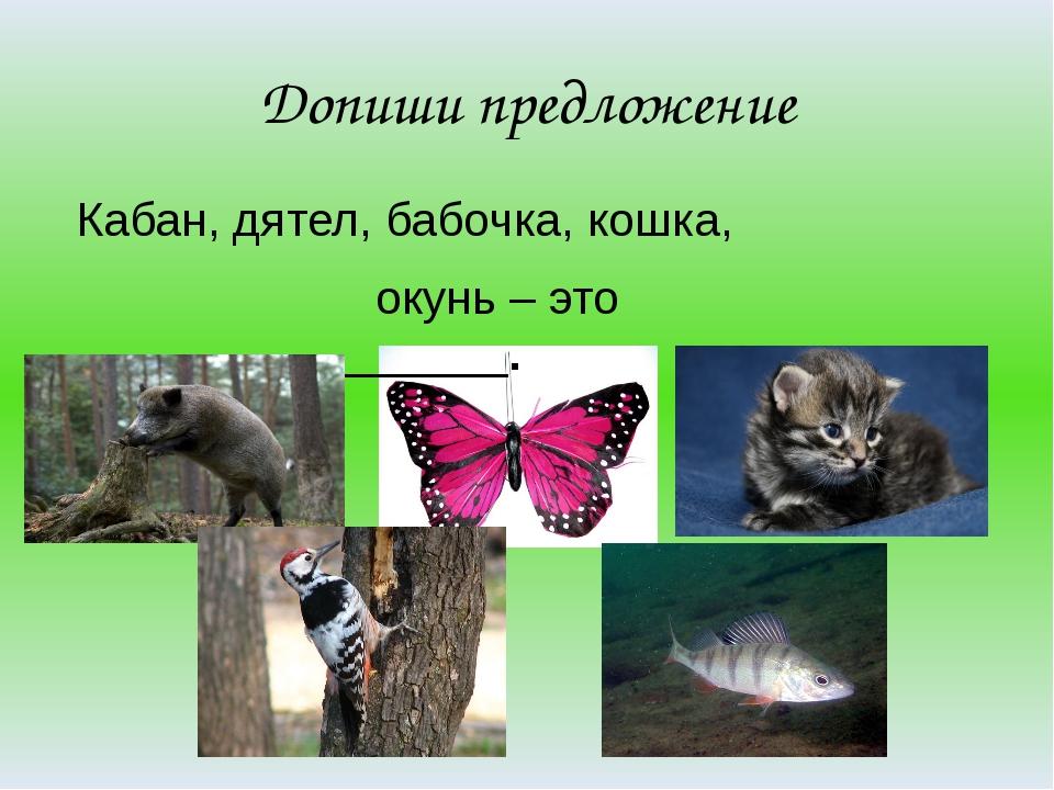 Допиши предложение Кабан, дятел, бабочка, кошка, окунь – это ________________...