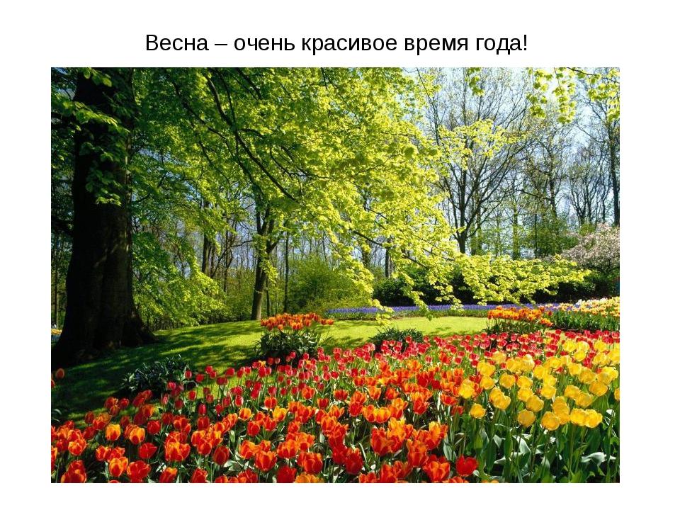 Весна – очень красивое время года!