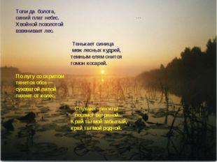 … Топи да болота, синий плат небес. Хвойной позолотой взвенивает лес. Тенька