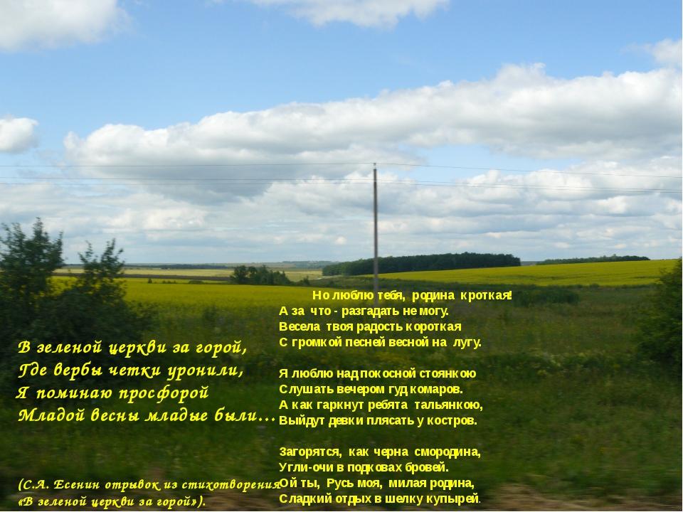 В зеленой церкви за горой, Где вербы четки уронили, Я поминаю просфорой Млад...