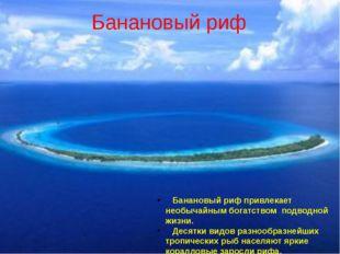 Банановый риф Банановый риф привлекает необычайным богатством подводной жизни