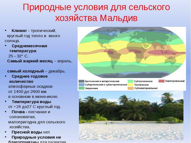 Природные условия для сельского хозяйства Мальдив Климат- тропический, кругл...