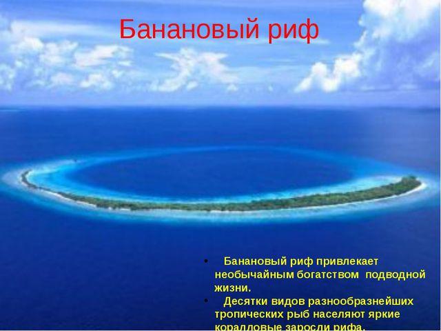 Банановый риф Банановый риф привлекает необычайным богатством подводной жизни...