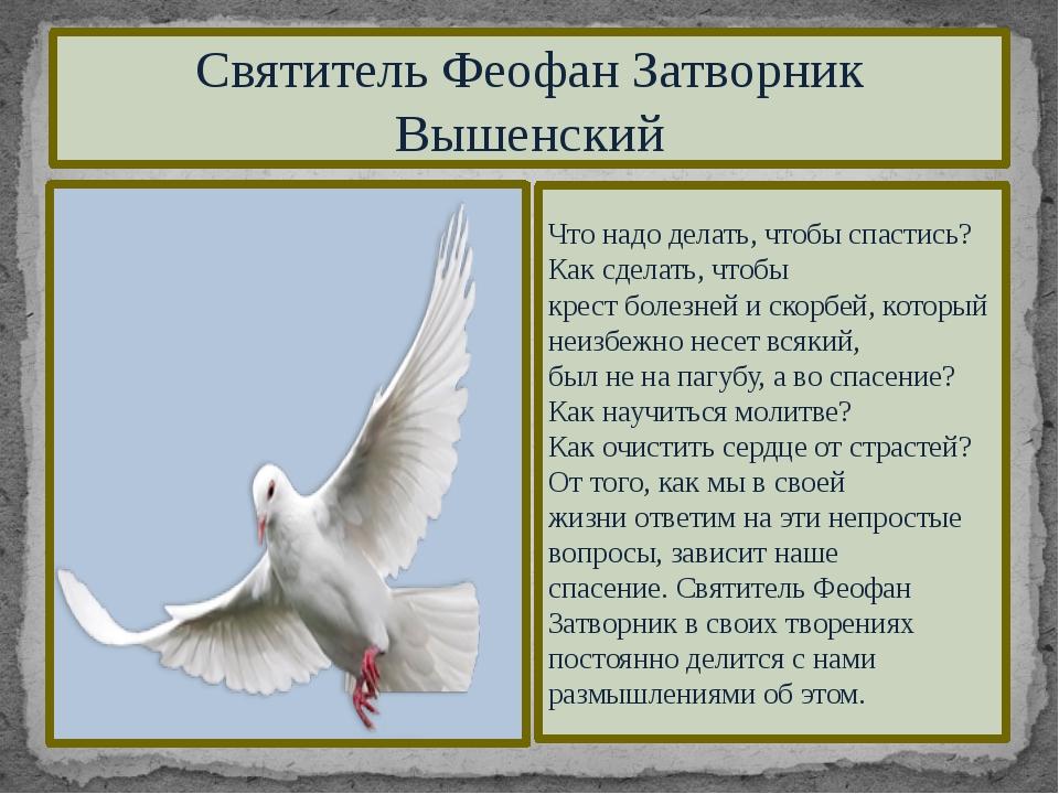 Святитель Феофан Затворник Вышенский Что надо делать, чтобы спастись? Как сде...