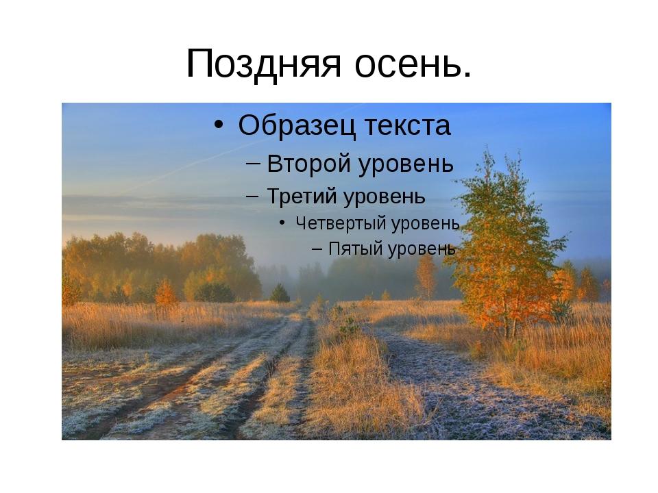 Поздняя осень.