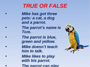 TRUE OR FALSE Mike has got three pets: a cat, a dog and a parrot. The parrot'