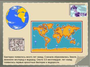Бактерии появились много лет назад. Сначала образовалась Земля, возникли кисл
