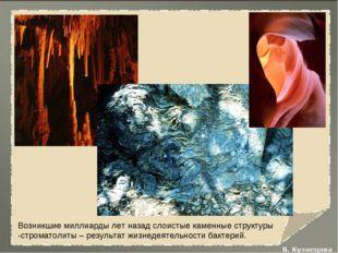 Возникшие миллиарды лет назад слоистые каменные структуры -строматолиты – рез