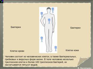 Человек состоит из человеческих клеток, а также бактериальных, грибковых и ви