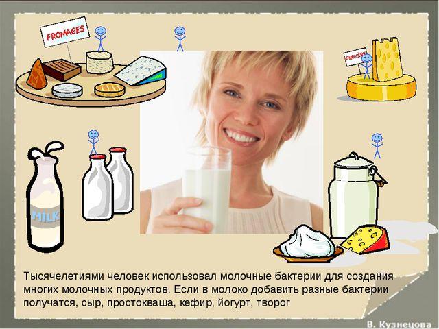 Тысячелетиями человек использовал молочные бактерии для создания многих молоч...