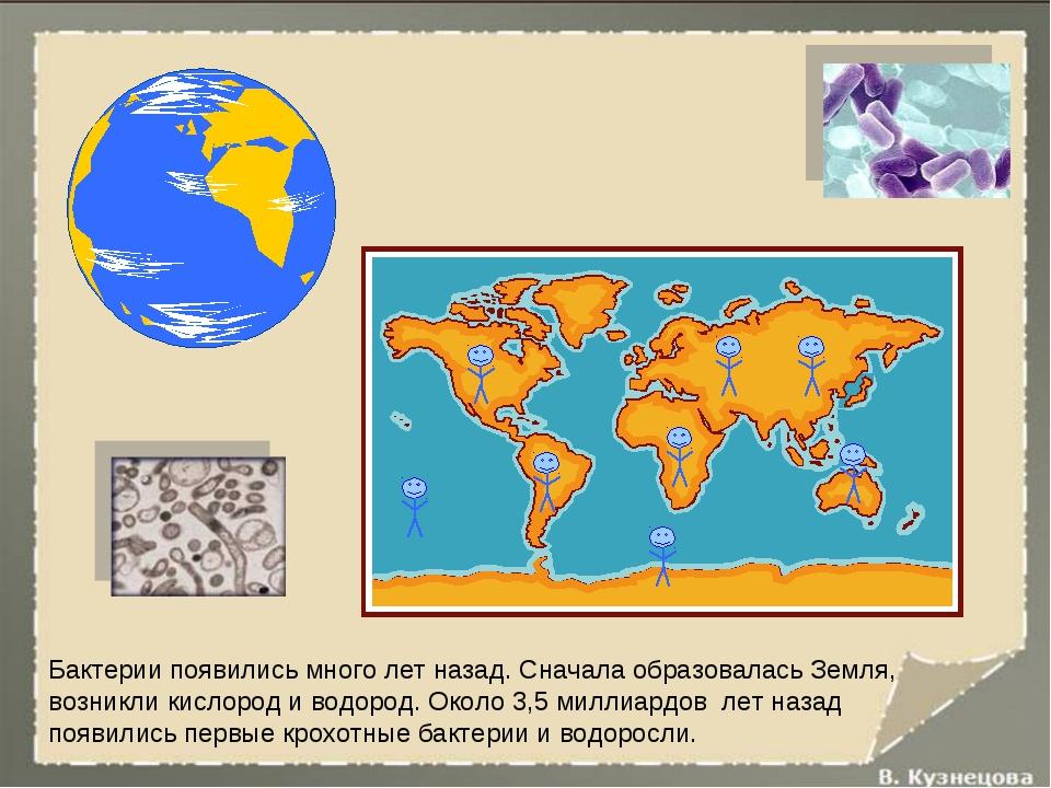 Бактерии появились много лет назад. Сначала образовалась Земля, возникли кисл...