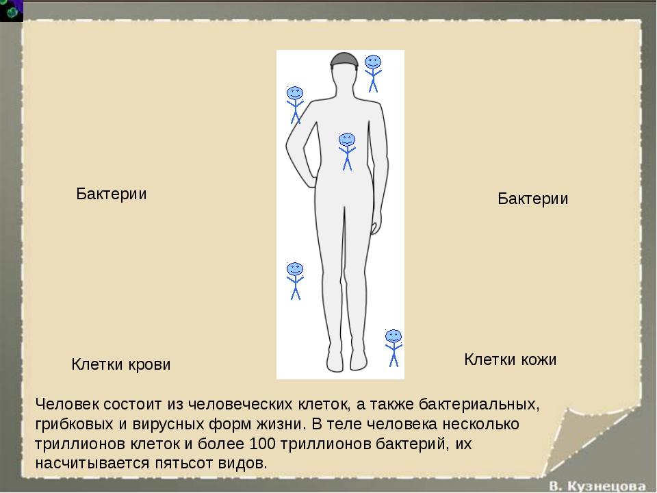 Человек состоит из человеческих клеток, а также бактериальных, грибковых и ви...