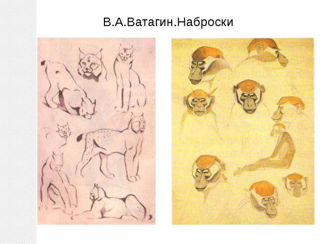 В.А.Ватагин.Наброски