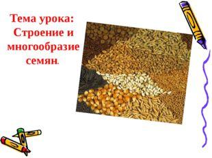 Тема урока: Строение и многообразие семян.