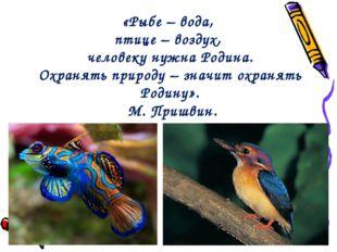 «Рыбе – вода, птице – воздух, человеку нужна Родина. Охранять природу – значи