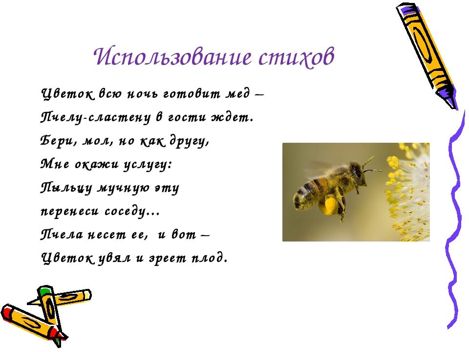 Использование стихов Цветок всю ночь готовит мед – Пчелу-сластену в гости жде...