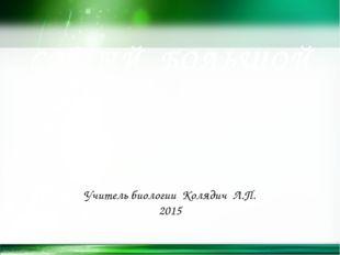 САМЫЙ БОЛЬШОЙ УРОК Школа для всех Учитель биологии Колядич Л.П. 2015 http://l