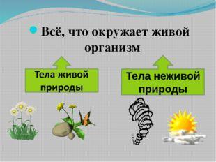 Всё, что окружает живой организм Тела неживой природы