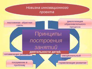Новизна инновационного проекта погружение в проблему оптимизация развития эм