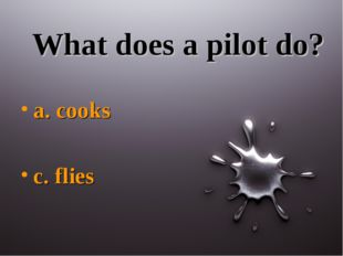 What does a pilot do? a. cooks c. flies