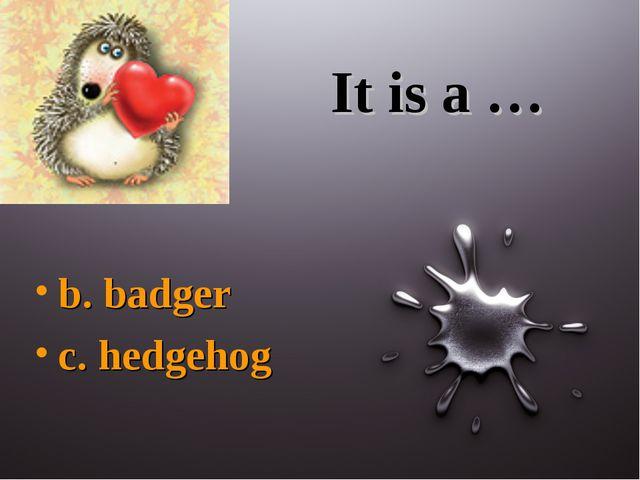 It is a … b. badger c. hedgehog