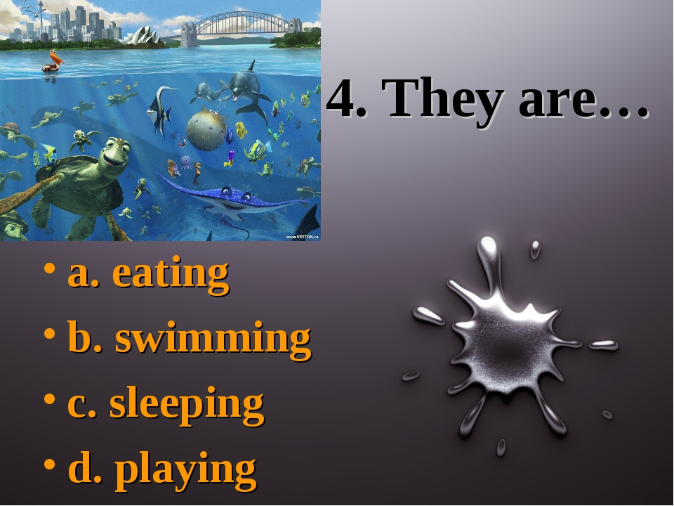 4. They are… a. eating b. swimming c. sleeping d. playing