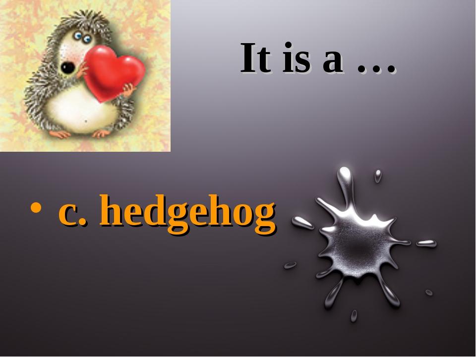 It is a … c. hedgehog