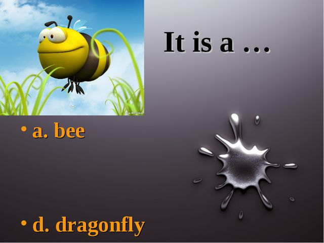 It is a … a. bee d. dragonfly