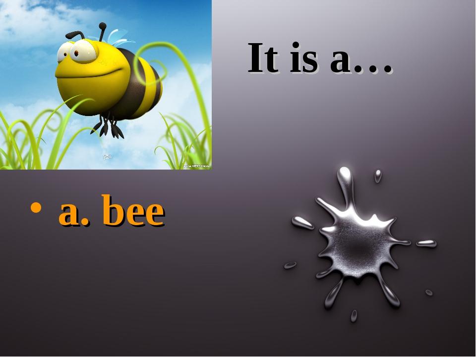 It is a… a. bee