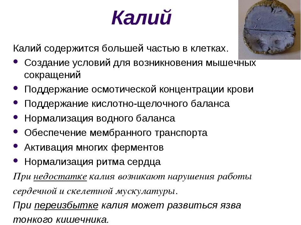 Калий Калий содержится большей частью в клетках. Создание условий для возникн...