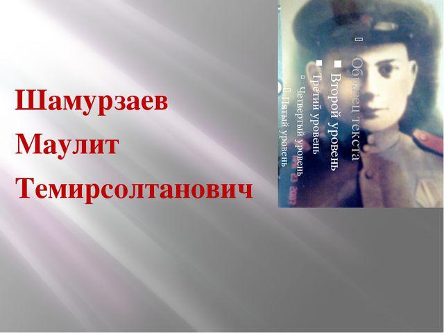 Шамурзаев Маулит Темирсолтанович
