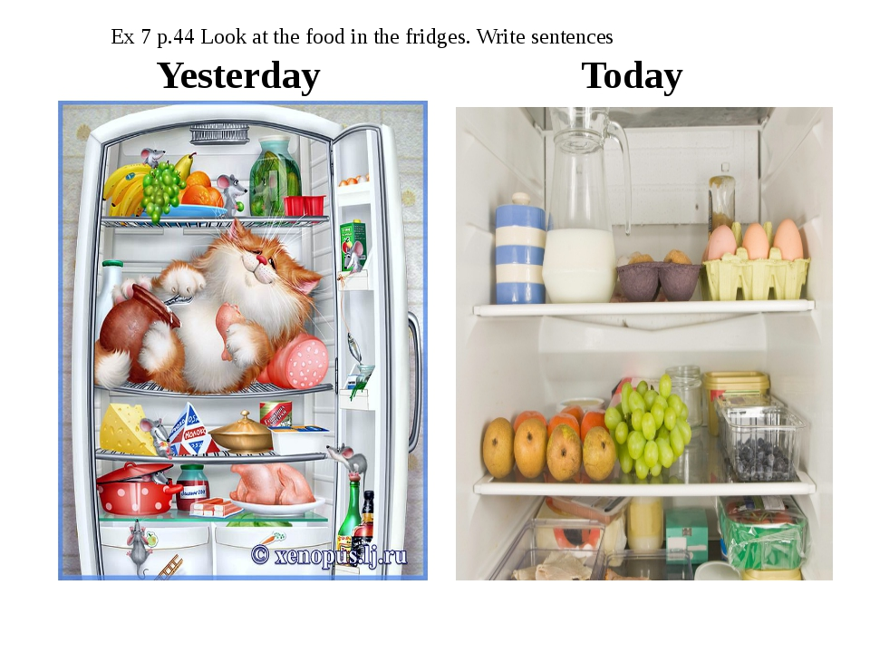 Yesterday Today Ex 7 p.44 Look at the food in the fridges. Write sentences