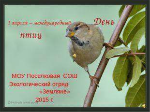 1 апреля – международный День птиц МОУ Поселковая СОШ Экологический отряд «Зе