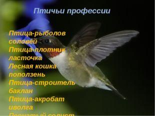 Птичьи профессии Птица-рыболов соловей Птица-плотник ласточка Лесная кошка по