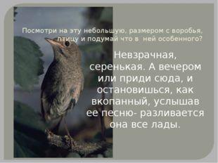 Посмотри на эту небольшую, размером с воробья, птицу и подумай что в ней особ